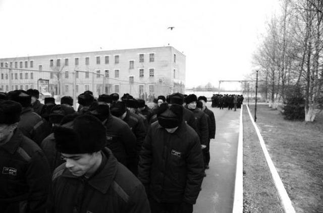 Виды режимов заключения в тюрьмах и колониях: отличия, описание