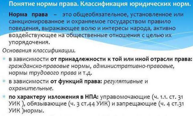 Уголовно процессуальные нормы РФ и институты, виды и структура