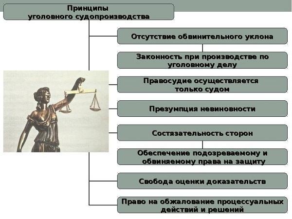 Принцип уголовного процесса: понятие, значение, характеристика