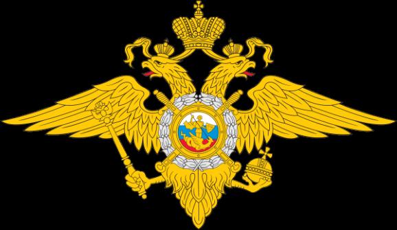 Ст 319 УК РФ с комментариями: оскорбление представителя власти