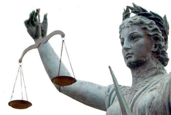 Ст 210 УК РФ с комментариями: организованное преступное сообщество